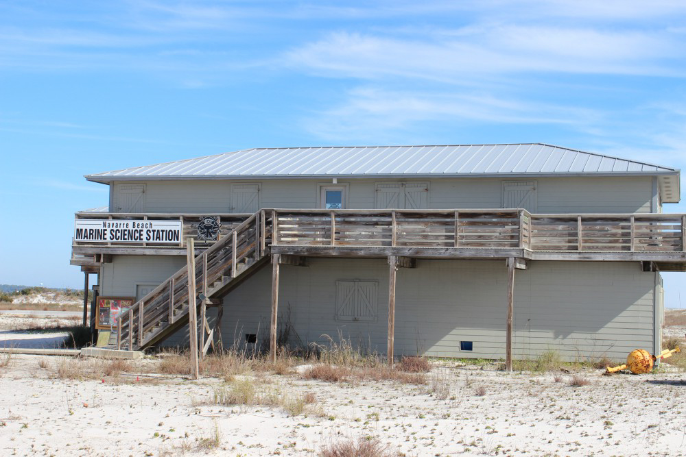 navarre-beach-marine-science-station-florida